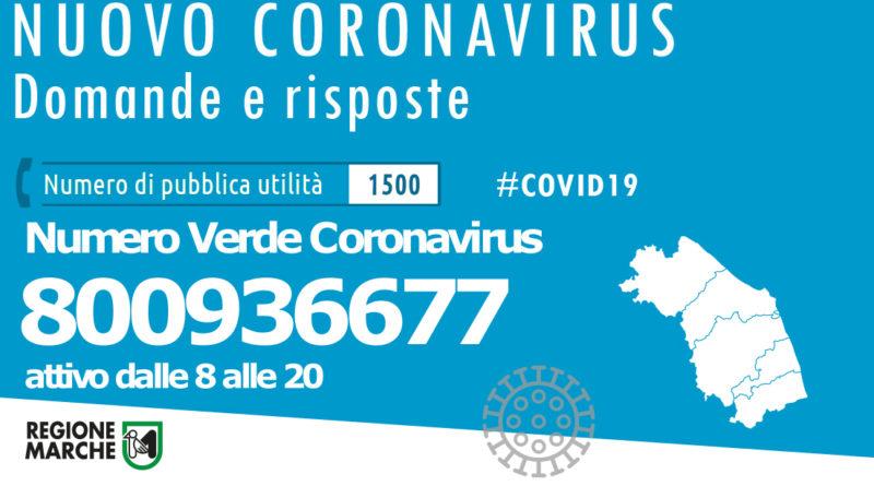 coronavirus loreto